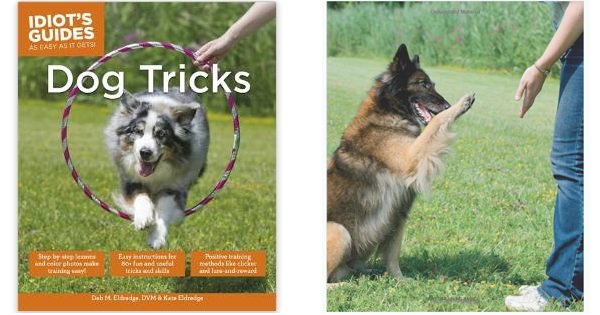 New Book Published - Idiot's Guides: Dog Tricks