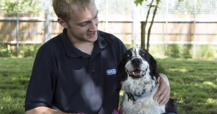 The Future's Looking Brighter For Blind Spaniel Left To Die