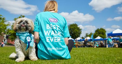 350 Dogs Took Part In RSPCA's Best Ever Birmingham Dog Walk